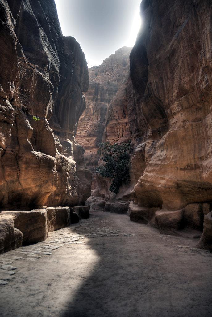 jordanien - petra -  der sik (10)