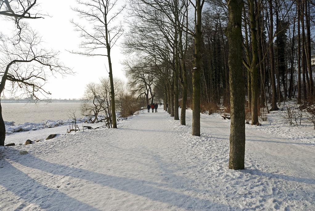 elbspaziergang  (15) - im park