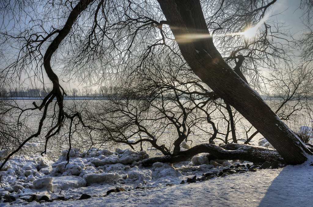 elbspaziergang (18) - winterstimmung