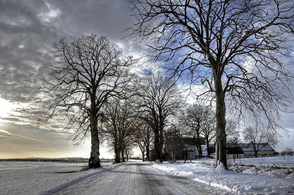 winterlandschaft (03)