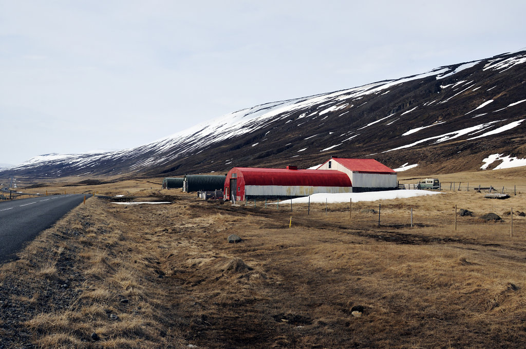 island – auf dem weg nach mývatn teil 6
