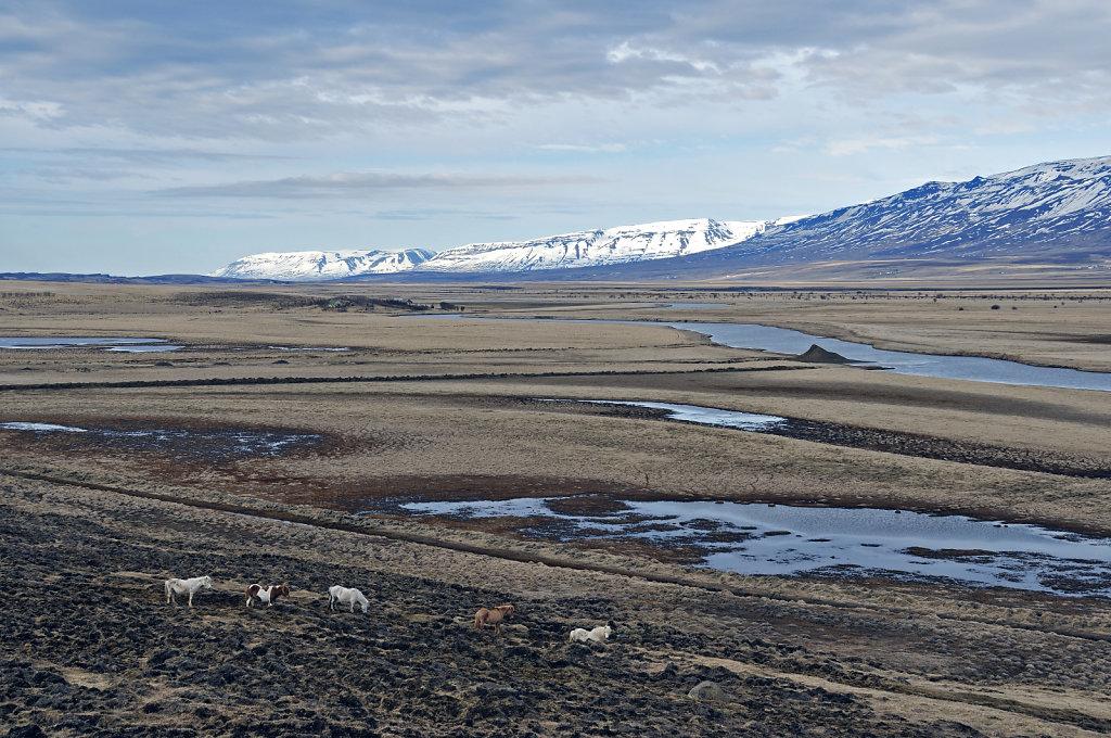 island – zwischen siglufjörður und varmahlíð (25) - glaumb