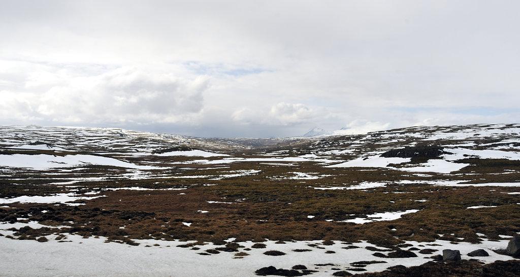 island – zwischen blönduós und borgarnes (06)