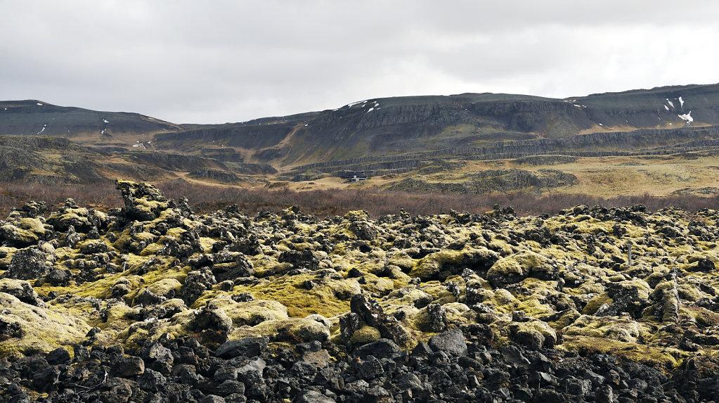island – zwischen blönduós und borgarnes (11)