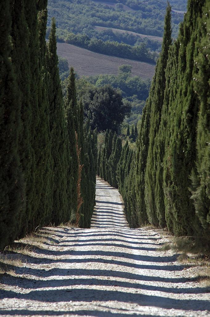 Provinz Siena