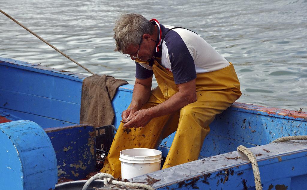 salent (35)  - die fischer teil zwei