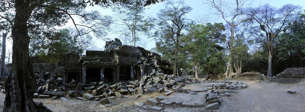 kambodscha - tempel von anghor - ta prohm (18) - teilpanorama