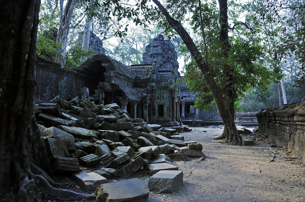 kambodscha - tempel von anghor - ta prohm (22)