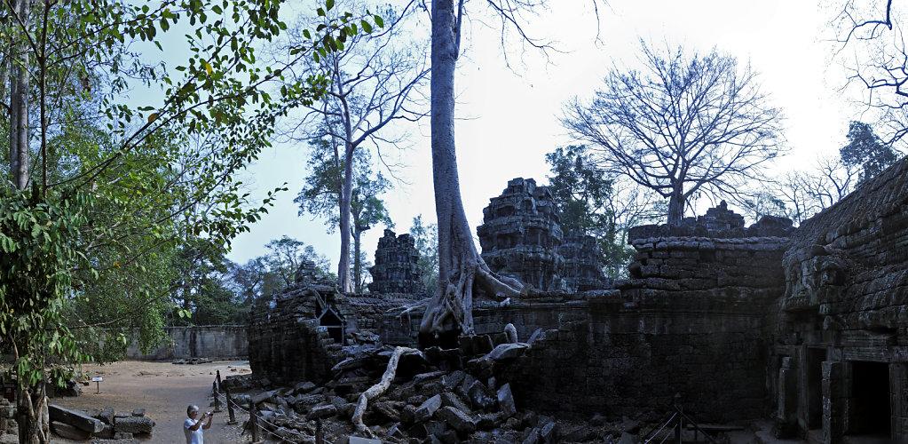 kambodscha - tempel von anghor - ta prohm (27) - teilpanorama te