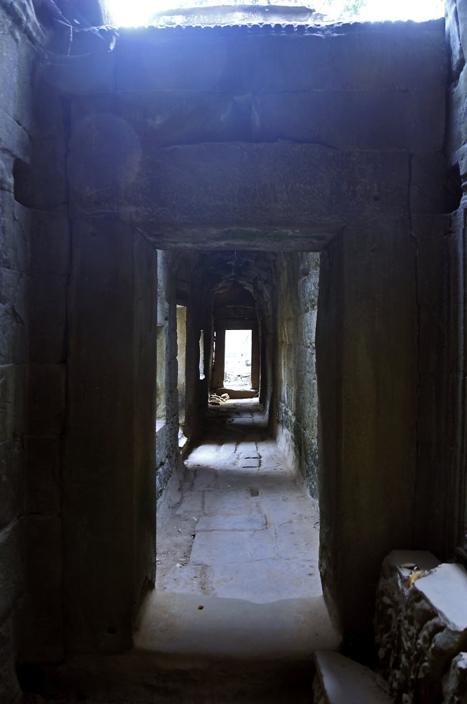 kambodscha - tempel von anghor - ta prohm (30)