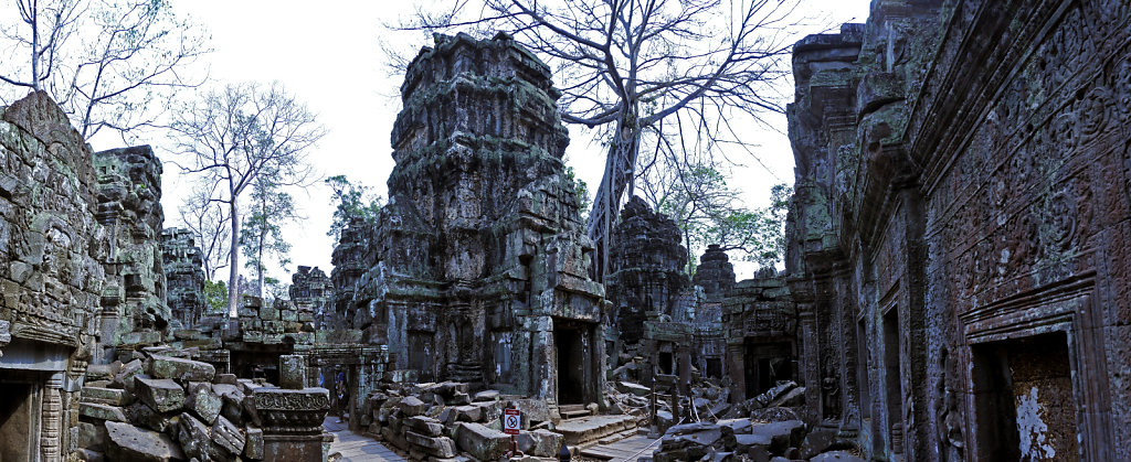 kambodscha - tempel von anghor - ta prohm (49) - teilpanorama te