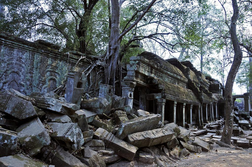 kambodscha - tempel von anghor - ta prohm (62)