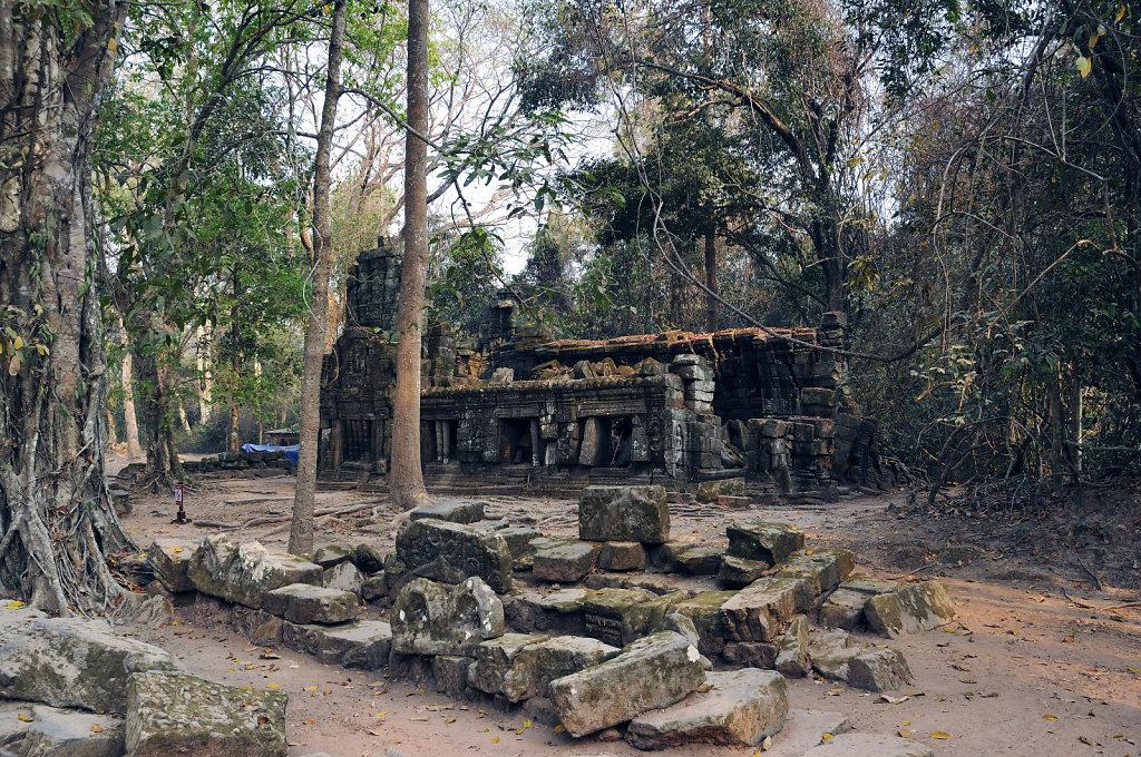 kambodscha - tempel von anghor - ta prohm (07)