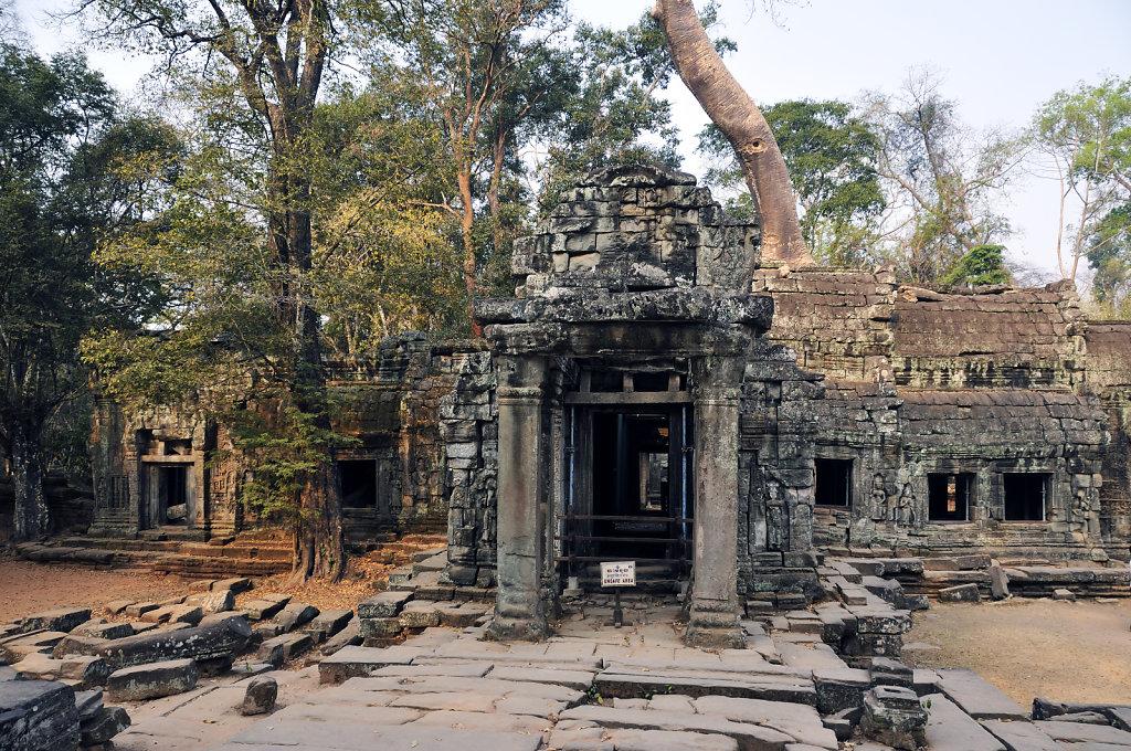 kambodscha - tempel von anghor - ta prohm (10)