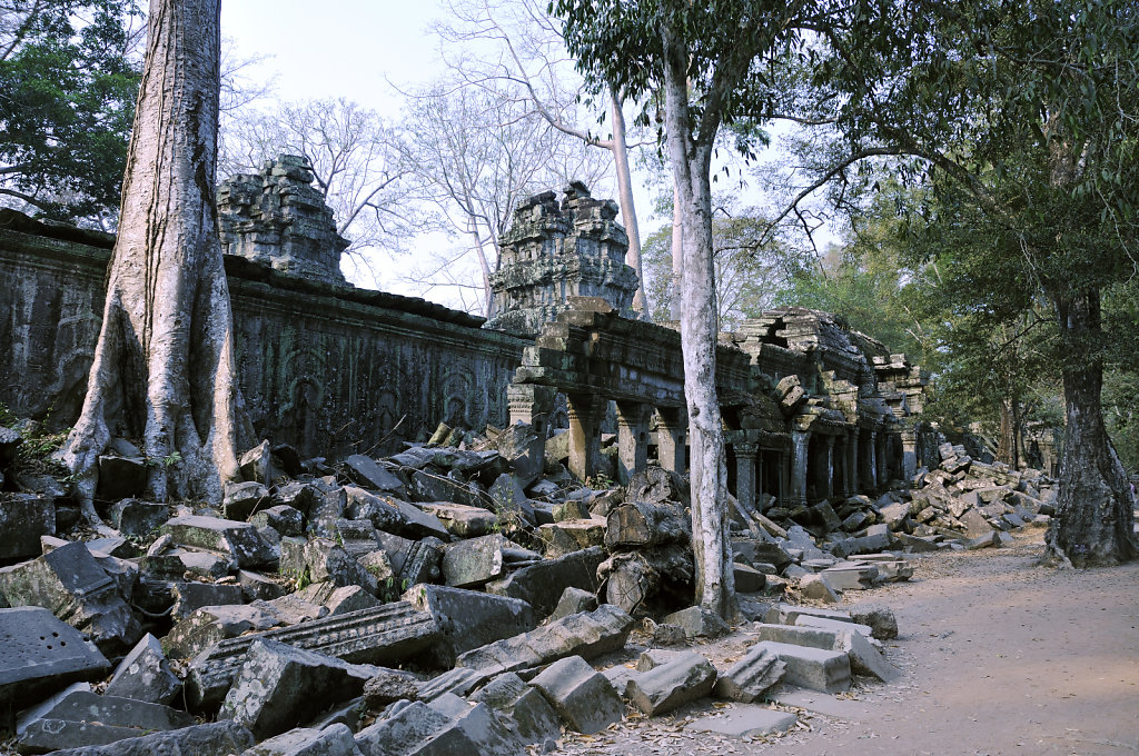kambodscha - tempel von anghor - ta prohm (16)